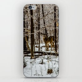 Deer in the Glistening Forest by Teresa Thompson iPhone Skin