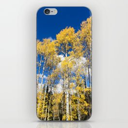 Colorado Aspens iPhone Skin