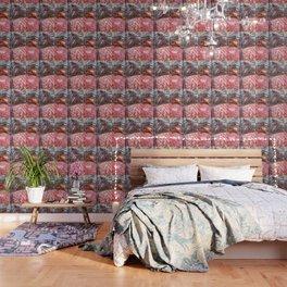 Sugar Rush Wallpaper