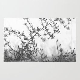 Wild Asters Botanical BW Rug