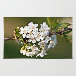 White Apple Blossoms Rug