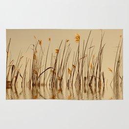 Grass 34 Rug