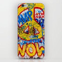 Berlin Wall iPhone Skin
