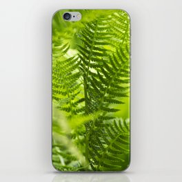 Green Fern Abstract iPhone Skin