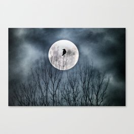 Night Raven Lit By The Full Moon Canvas Print