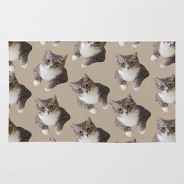 beige tan grey american wirehair cat pattern Rug