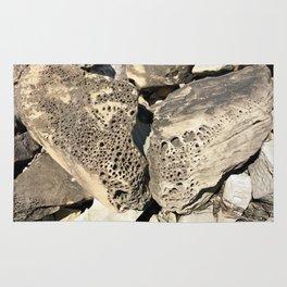 Stone Lace Wings Rock Boulder Washington Northwest Geology Geologist Sandstone Chuckanut Formation Rug