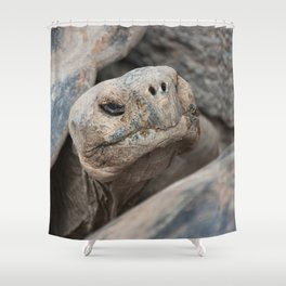 The ancient one Shower Curtain