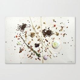 i spy - coffee & copper Canvas Print