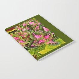 COLEUS CONVERGENCE Notebook
