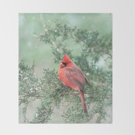 Christmas Bird (Northern Cardinal) Throw Blanket