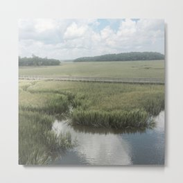 Peaceful Marshy Meadow Metal Print