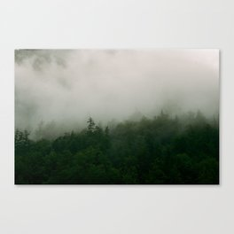 Mist on the mountainside. Canvas Print