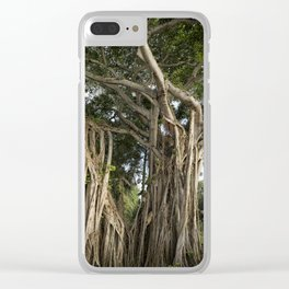 Banyan Tree at Bonnet House Clear iPhone Case