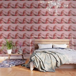 Big Pink Flamingo with pink Background Wallpaper