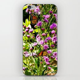 Monarch Butterfly Couple iPhone Skin