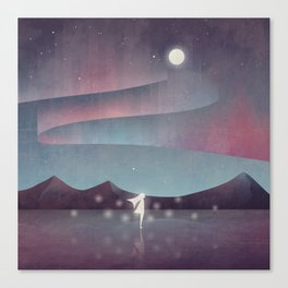 Descendant Of The Northern Lights Canvas Print