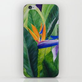 Bird of Paradise Painting by Teresa Thompson iPhone Skin