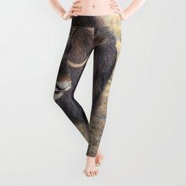 Arctic Muskox Leggings
