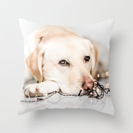 light up my day Throw Pillow