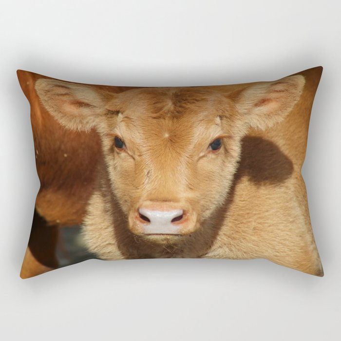 Portrait of a Calf Rectangular Pillow