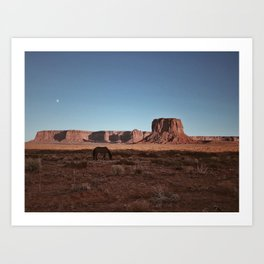 Horse And Moon Art Print