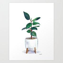 Rubber Plant Painting Art Print