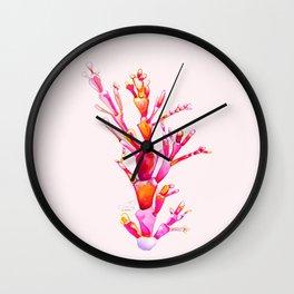 Corallina Seaweed Wall Clock