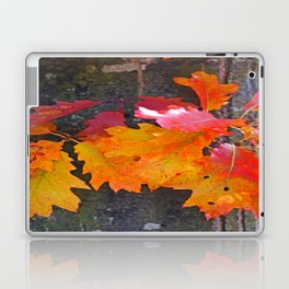 glowing autumn Laptop & iPad Skin