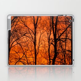 Leafless Trees At October Sunrise #decor #buyart #society6 Laptop & iPad Skin