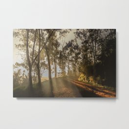 The firts light Metal Print