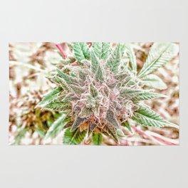 Flower Star Blooming Bud Indoor Hydro Grow Room Top Shelf Rug