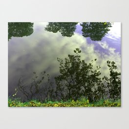 Water Reflection #3 Canvas Print