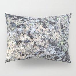 Nature lover's abstract art - Lichen on granite Pillow Sham