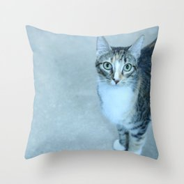 Revina the Cat with the Precious Face Throw Pillow