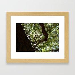 angel 03 Framed Art Print