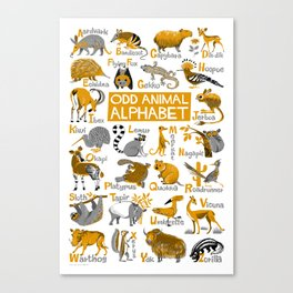 Odd Animal Alphabet Canvas Print