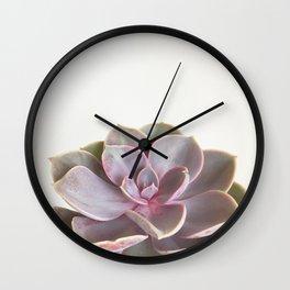 Purple Succulent Wall Clock