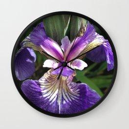 Alaska Wild Iris by Mandy Ramsey, Haines, Alaska Wall Clock