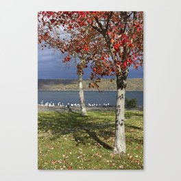Autumn Day in the Finger Lakes I Canvas Print