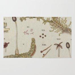 Moss And Hornwort Botany Rug