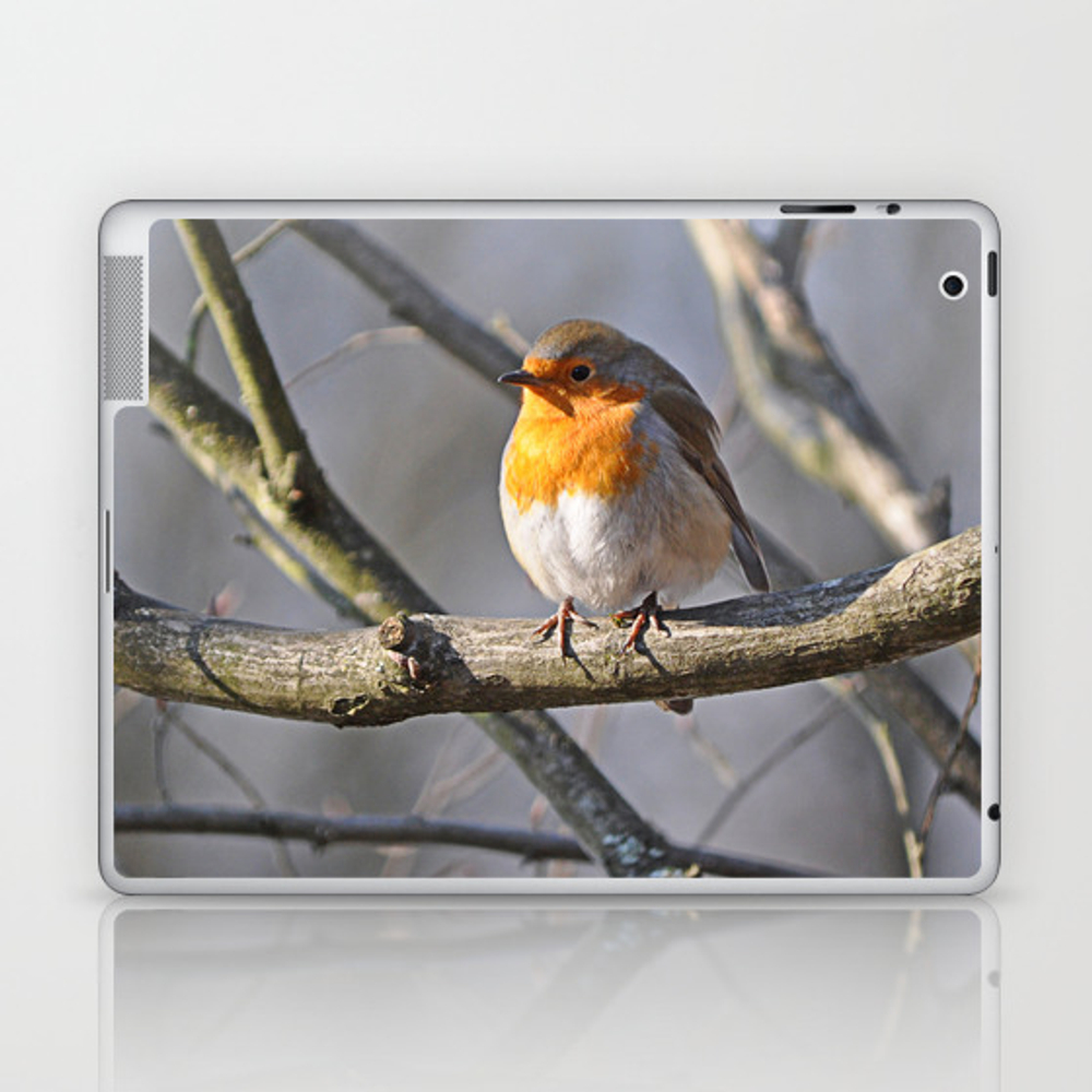 Robin Redbreast Laptop & Ipad Skin by Pirminnohr (LSK915575) photo