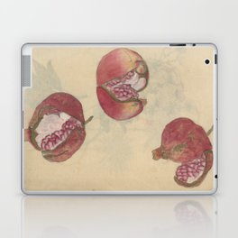 Pomegranates Laptop & iPad Skin