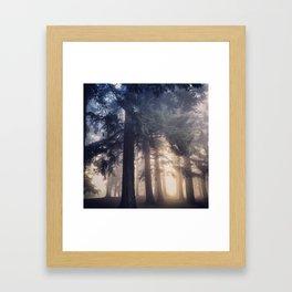 Foggy Morning in the PNW Framed Art Print