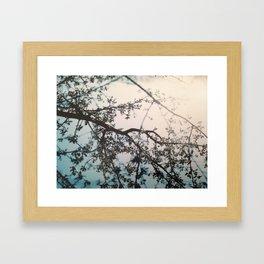 dreaming 2 Framed Art Print