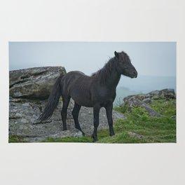 Dartmoor Heritage Pony Rug