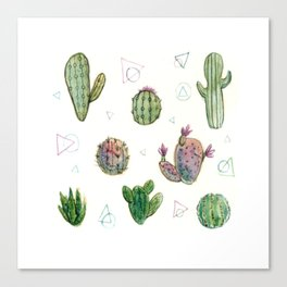 Cactus and Triangles Canvas Print