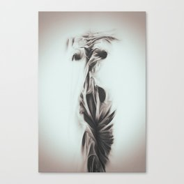 in 850 Canvas Print