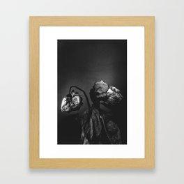 Rose VI Framed Art Print