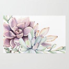 Desert Succulents on White Rug